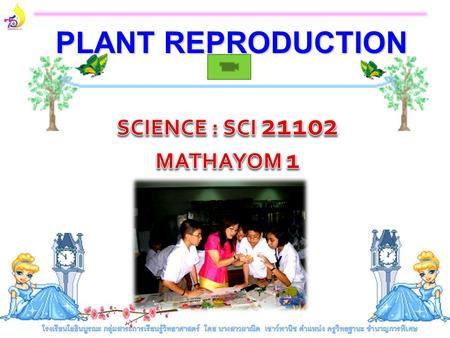 PLANT REPRODUCTION Part 1 Sexual Reproduction.