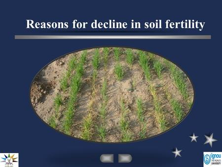 Reasons for decline in soil fertility