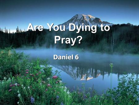 Are You Dying to Pray? Daniel 6.