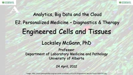 Engineered Cells and Tissues Locksley McGann, PhD Professor Department of Laboratory Medicine and Pathology University of Alberta 24 April, 2012 Analytics,