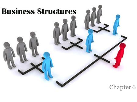 Business Structures Chapter 6.