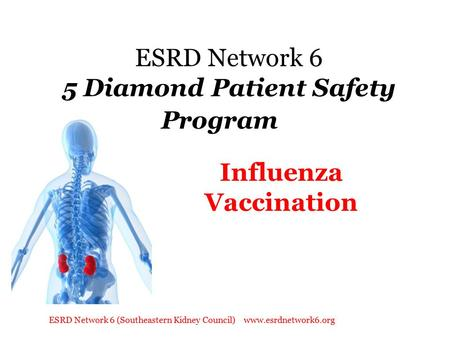 ESRD Network 6 (Southeastern Kidney Council) www.esrdnetwork6.org ESRD Network 6 5 Diamond Patient Safety Program Influenza Vaccination.