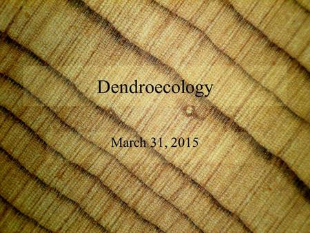 Dendroecology March 31, 2015. Dendroecology Dendroecology is the analysis of ecological issues such as fire, insect outbreaks, and stand-age structure.