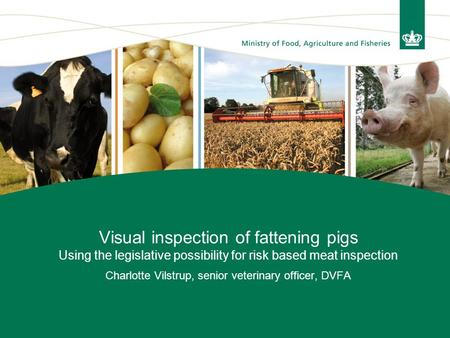 Visual inspection of fattening pigs Using the legislative possibility for risk based meat inspection Charlotte Vilstrup, senior veterinary officer, DVFA.