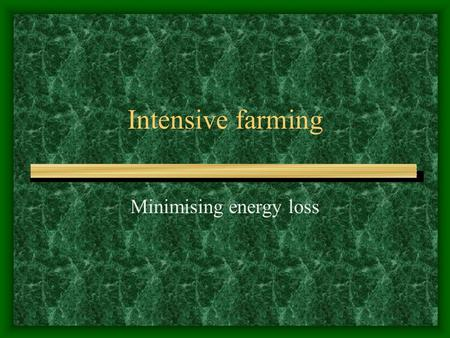 Intensive farming Minimising energy loss Intensive farms are profitable Maximise output by various methods Specially bred animals for high growth rates.