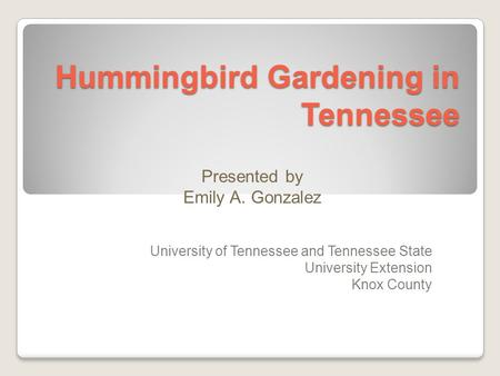 Hummingbird Gardening in Tennessee University of Tennessee and Tennessee State University Extension Knox County Presented by Emily A. Gonzalez.