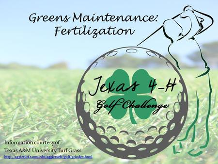 Greens Maintenance: Fertilization Information courtesy of Texas A&M University Turf Grass