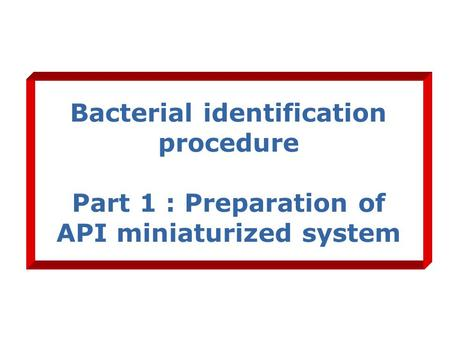 Bacterial identification procedure Part 1 : Preparation of API miniaturized system.