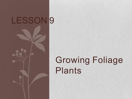 Growing Foliage Plants LESSON 9. Next Generation Science/ Common Core Standards Addressed! WHST.11‐12.8 Gather relevant information from multiple authoritative.