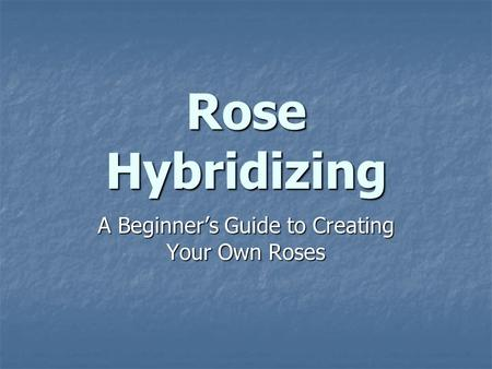 A Beginner's Guide to Creating Your Own Roses