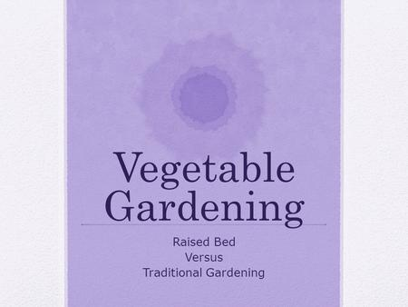 Vegetable Gardening Raised Bed Versus Traditional Gardening.