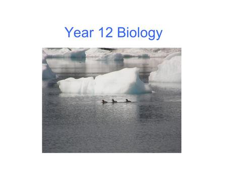 Year 12 Biology. Diversity and change Ecosystems change – Abiotic factors may vary – eg light, water, temperature, salinity, tides These may vary cyclically.