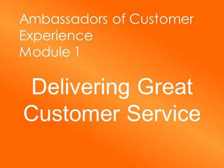 Ambassadors of Customer Experience Module 1 Delivering Great Customer Service.