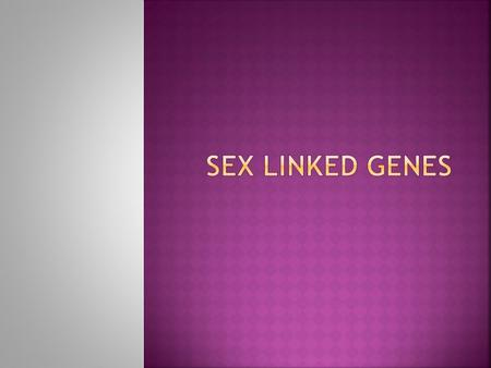  Genes are found on the X AND Y chromosomes.  Genes that are carried on the sex chromosomes are called sex linked genes.