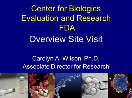 Center for Biologics Evaluation and Research FDA Overview Site Visit Carolyn A. Wilson, Ph.D. Associate Director for Research.
