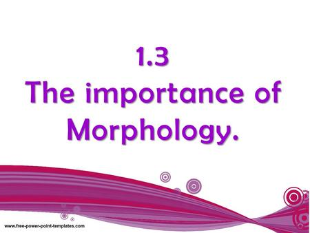 1.3 The importance of Morphology.