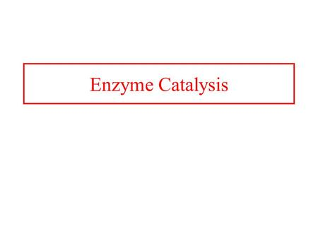 Enzyme Catalysis.