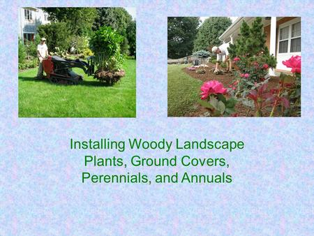 Installing Woody Landscape Plants, Ground Covers, Perennials, and Annuals.