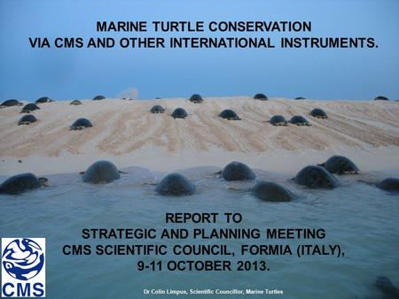 MARINE TURTLE CONSERVATION VIA CMS AND OTHER INTERNATIONAL INSTRUMENTS. REPORT TO STRATEGIC AND PLANNING MEETING CMS SCIENTIFIC COUNCIL, FORMIA (ITALY),