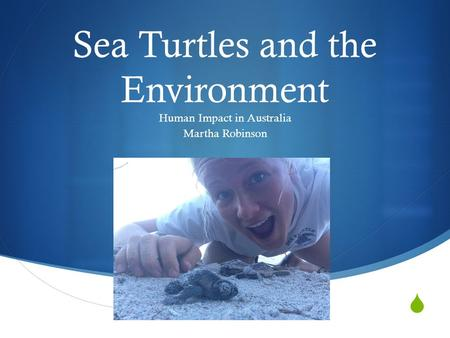  Sea Turtles and the Environment Human Impact in Australia Martha Robinson.