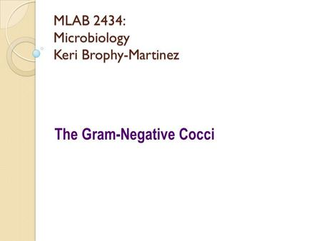 MLAB 2434: Microbiology Keri Brophy-Martinez The Gram-Negative Cocci.