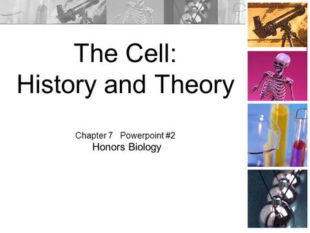 The Cell: History and Theory Chapter 7 Powerpoint #2 Honors Biology