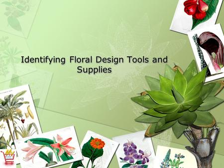Identifying Floral Design Tools and Supplies. Student Learning Objectives Identify cutting tools used in floral design. Recognize floral design supplies.