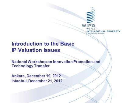 Introduction to the Basic IP Valuation Issues National Workshop on Innovation Promotion and Technology Transfer Ankara, December 19, 2012 Istanbul, December.