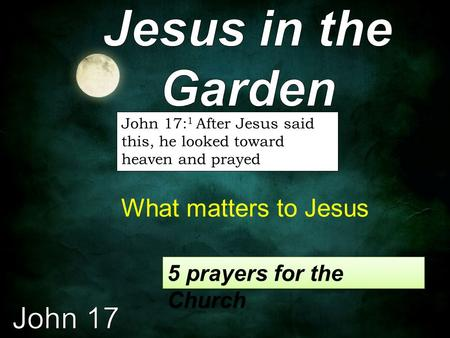 John 17: 1 After Jesus said this, he looked toward heaven and prayed What matters to Jesus 5 prayers for the Church.