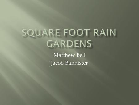 Matthew Bell Jacob Bannister.  Rain Gardens offer homeowners an inexpensive and simple to implement option to reduce stormwater runoff on their property.