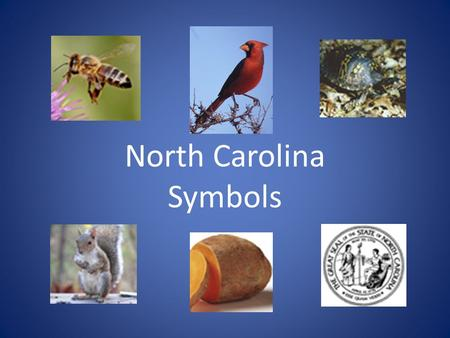 North Carolina Symbols. What is North Carolina's state drink? Milk became the state beverage (drink) in 1987. Did you know that NC produces just over.