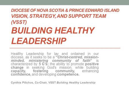 DIOCESE OF NOVA SCOTIA & PRINCE EDWARD ISLAND VISION, STRATEGY, AND SUPPORT TEAM (VSST) BUILDING HEALTHY LEADERSHIP Healthy Leadership for lay and ordained.