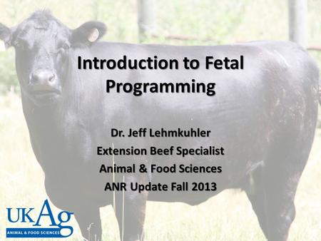 Introduction to Fetal Programming Dr. Jeff Lehmkuhler Extension Beef Specialist Animal & Food Sciences ANR Update Fall 2013.