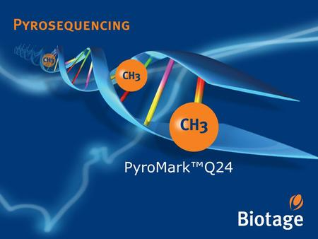 PyroMark™Q24. PyroMark Q24 A Complete solution for Mutation and Methylation Analysis CpG methylation Allele quantification Mutation analysis A Small Smart.