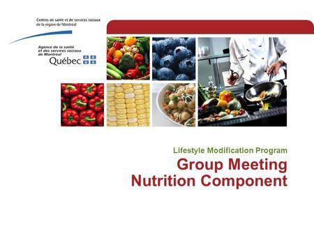 Group Meeting Nutrition Component Lifestyle Modification Program.