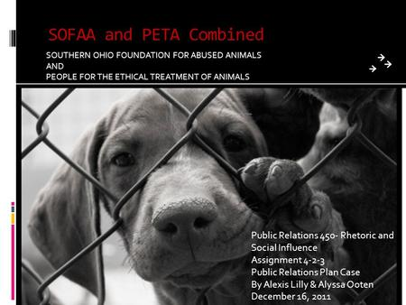 SOFAA and PETA Combined SOUTHERN OHIO FOUNDATION FOR ABUSED ANIMALS AND PEOPLE FOR THE ETHICAL TREATMENT OF ANIMALS Public Relations 450- Rhetoric and.