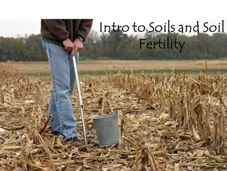 Intro to Soils and Soil Fertility. What is Soil? Provides air, water and nutrients to plants Soil provides mechanical support to plants Consists of.