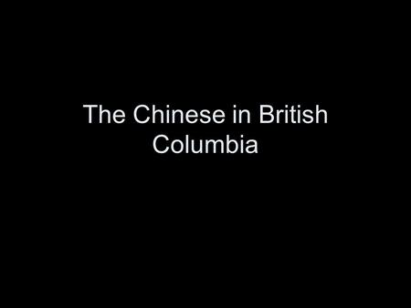 The Chinese in British Columbia. In the early 1850's the First Chinese arrived in North America amongst the many other prospectors searching for gold.