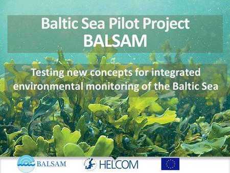 Baltic Sea Pilot Project BALSAM Testing new concepts for integrated environmental monitoring of the Baltic Sea.