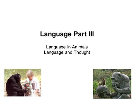 Language Part III Language in Animals Language and Thought.
