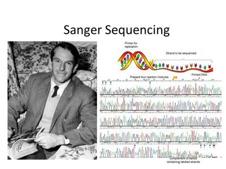 Sanger Sequencing. 1) Get Some DNA To Sequence *le pick… *le smash… *le precipitate… *le DNA in le solution.