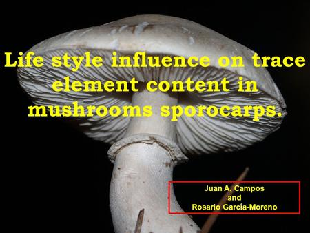 Life style influence on trace element content in mushrooms sporocarps. Juan A. Campos and Rosario García-Moreno.