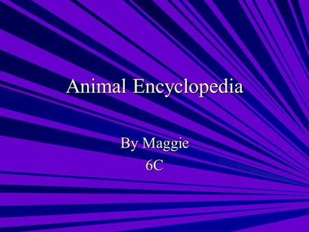 Animal Encyclopedia By Maggie 6C. Table of Contents Amphibians Golden Poison Dart Frog Golden Poison Dart Frog & Northern Leopard Frog Northern Leopard.