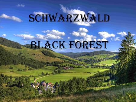 Schwarzwald Black forest. Schluchsee  is one of the biggest lakes in Baden –Württemberg  The width is 1,2 km and the length is 7,5 km  The lake has.