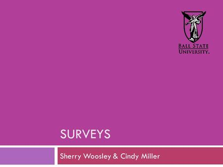 SURVEYS Sherry Woosley & Cindy Miller. Overall Surveys.