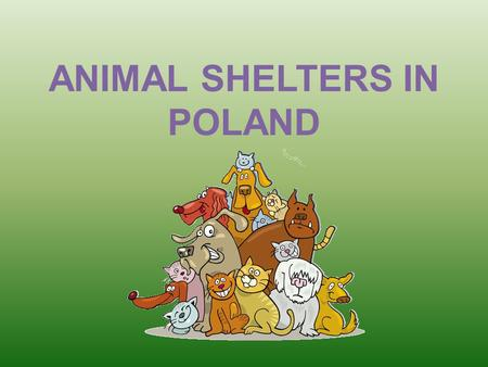 ANIMAL SHELTERS IN POLAND. Who takes care of homeless pets? Taking care of homeless pets is communes' task. They provide accommodation for dogs in animal.