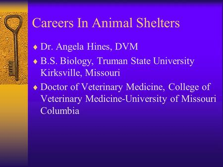 Careers In Animal Shelters