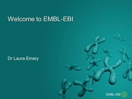 Welcome to EMBL-EBI Dr Laura Emery. Before we start… Stand up How experienced are you in bioinformatics? Get to know each other by arranging yourselves.