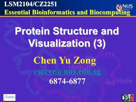 LSM2104/CZ2251 Essential Bioinformatics and Biocomputing Essential Bioinformatics and Biocomputing Protein Structure and Visualization (3) Chen Yu Zong.