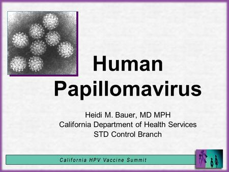 Human Papillomavirus Heidi M. Bauer, MD MPH California Department of Health Services STD Control Branch.